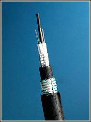 Dupla proteção contra roedor metálica